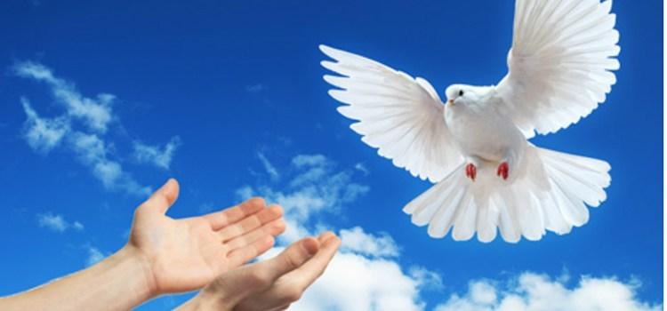 Mensagem Dia Mundial da Paz 2019